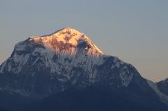 Lever de soleil sur Dhaulagiri