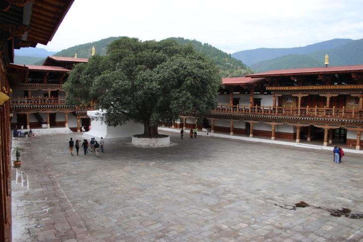 Intérieur Punakha dzong