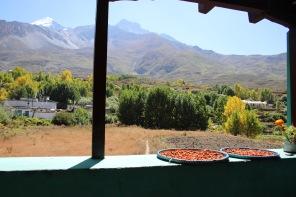 Abricots séchés et vue Jarkot