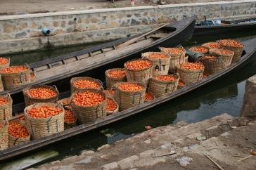 Livraison de tomate pour le marché