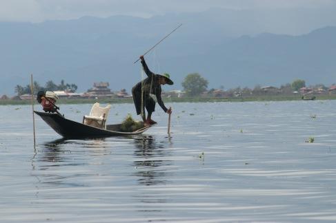 Pêcheur qui reprend son filet