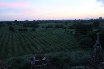 Nos derniers rayons de soleil sur Bagan