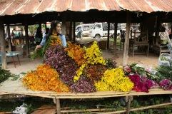 Vendeuse de fleurs au marché