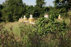 Jardin de Lumbini