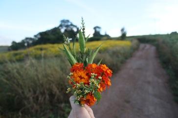 Bouquet de gentillesse
