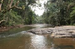 La rivière du parc
