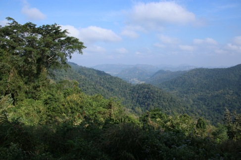 Vue sur la jungle du Khao Yai