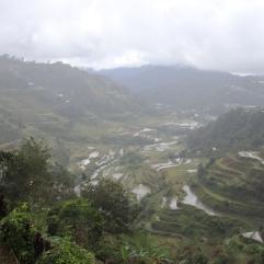 La brume des rizières sous la pluie