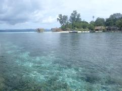 Récif et plage