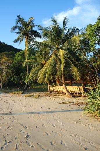 Salle à manger derrière les palmiers