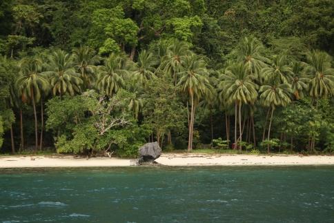 Snorkeling et plage déserte