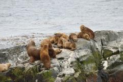 Famille installée pour la sieste
