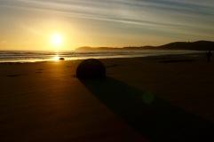 Lever de soleil sur Moeraki boulders