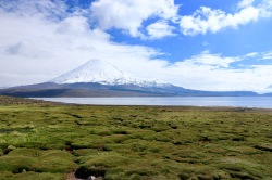 Lac Chungara et volcan parinacota