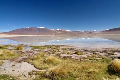 Reflets sur la Laguna Blanca