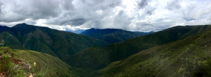 Vue panoramique