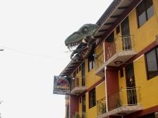 Hostel Los Chocos