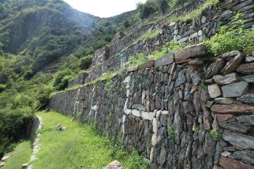 Terrasses de lamas