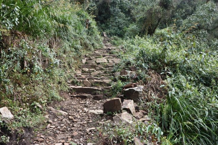 Escaliers incas
