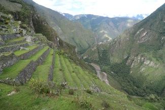 Terrasses Machu Picchu