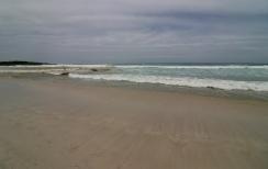 Plage de Tortuga Bay
