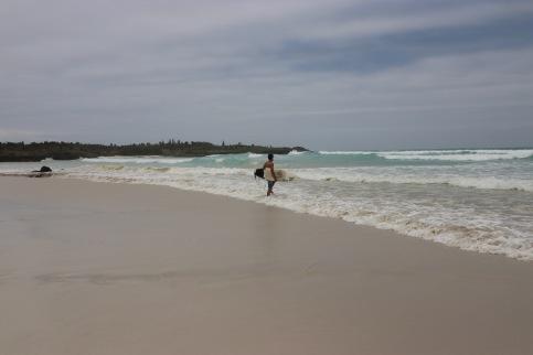 Surfeur à Tortuga Bay