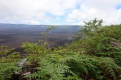 Cratère du volcan Sierra Negra